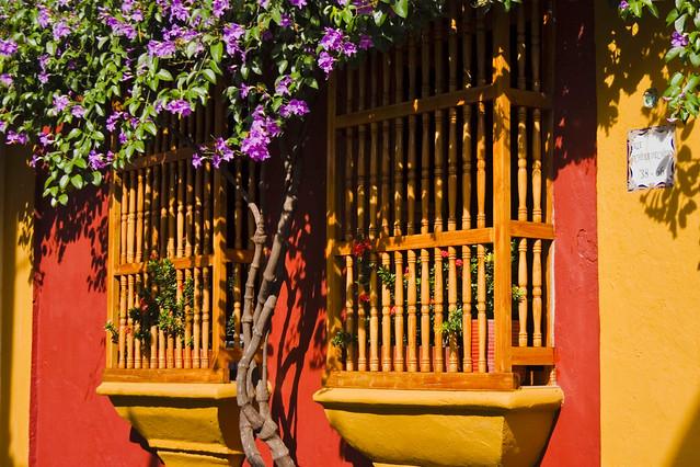 Cartagena - Windows - Flowers