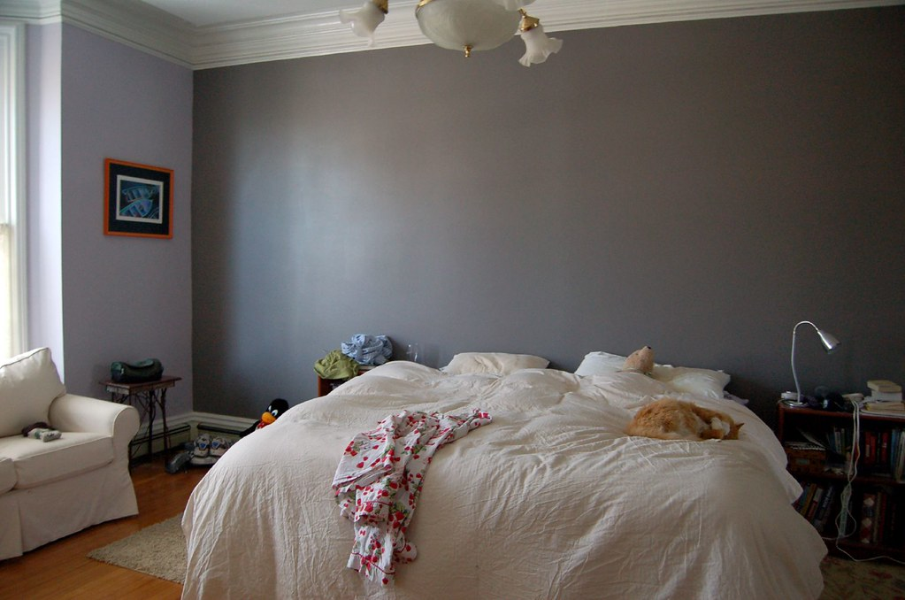 Master Bedroom accent wall | Accent Wall: Sherwin Williams ...