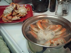 crab   by Adventures of Pam & Frank