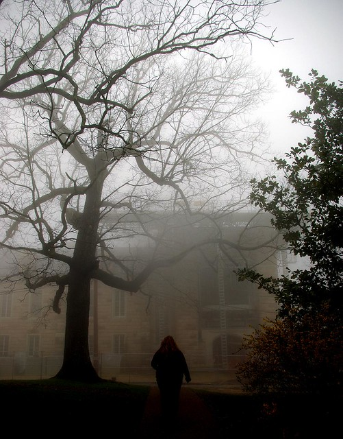 Foggy University of the South, Franklin Co, TN