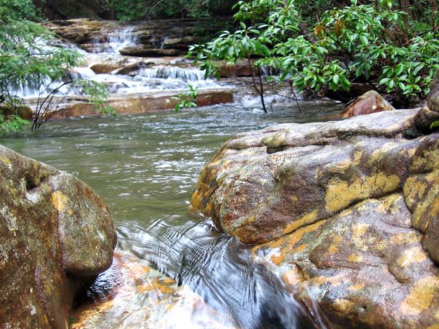 Laurel Creek, Virgin Falls State Park, White Co, TN