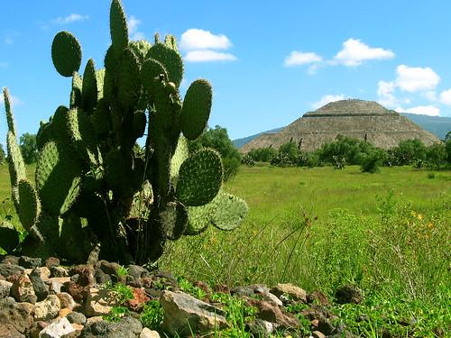 Pirámide del sol, y nopal. Teotihuacán. Estado de México. | by diegoaf9