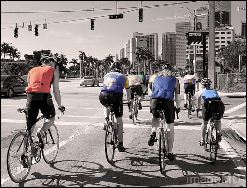 Biscayne Bicycles