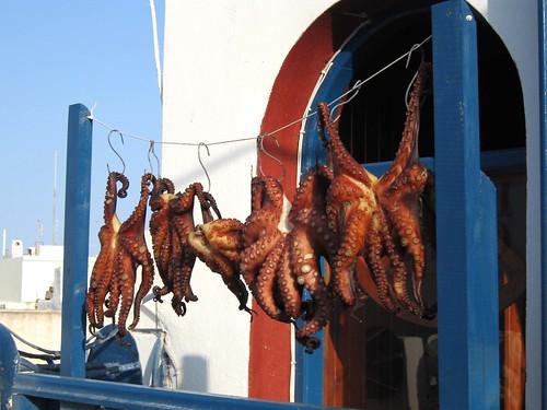 octopus, SANTORIN // Grèce