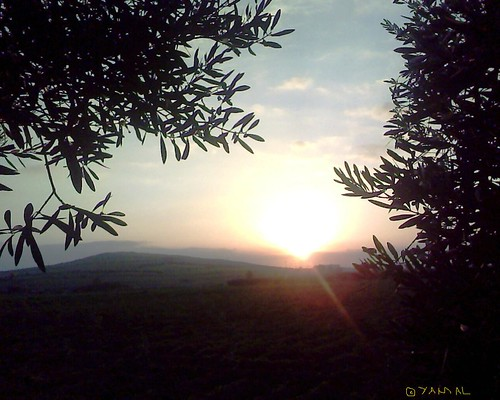 sunset nature soleil coucher morocco maroc milli غروب المغرب hassi طبيعة بركان berkane ميلي حاسي triffa تريفة