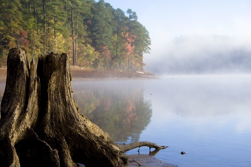 camping trees mist lake reflection fall beach water colors fog falls drought stump fallslake anawesomeshot