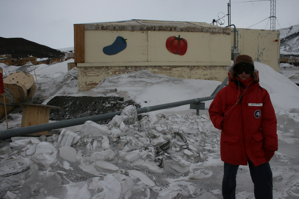 Antarctica: the greenhouse