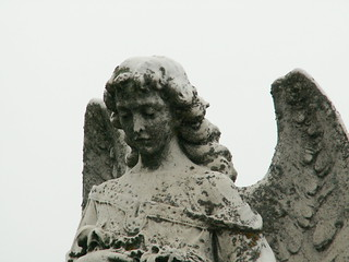 Graveyard Angel | by Cindy Funk