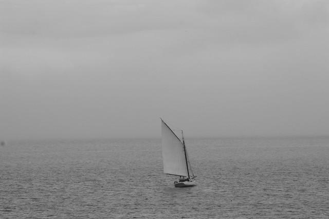 Sailing Into the Fog