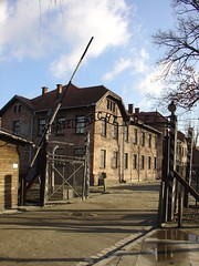 Work will set you free Aushwitz | by amanderson2