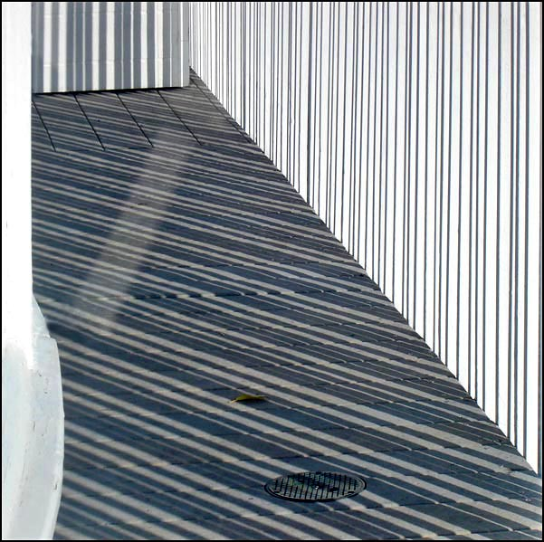 stripes allover