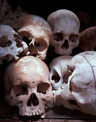 Killing Fields Skulls
