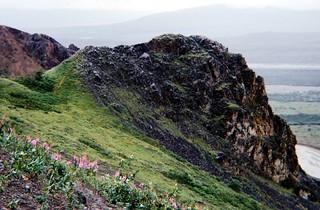 McKinley National Park