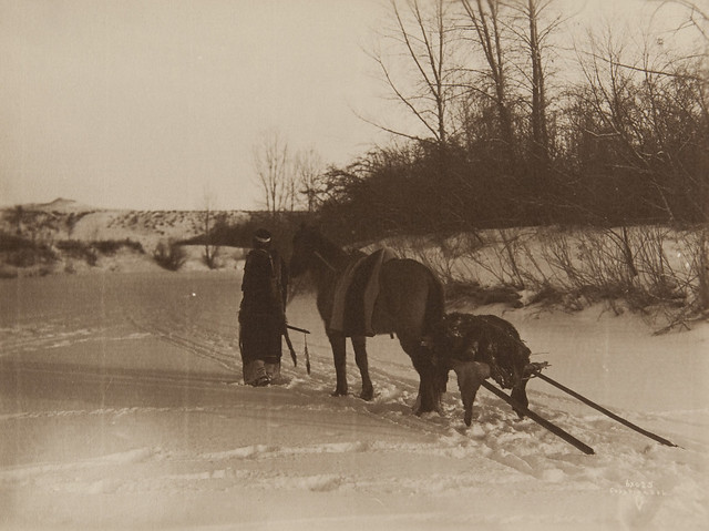 Untitled (Native American with horse pulling travois)