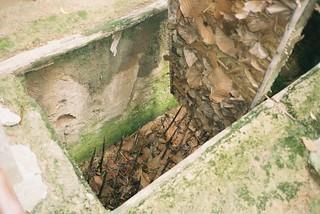 Cu Chi Tunnels | by Phillie Casablanca