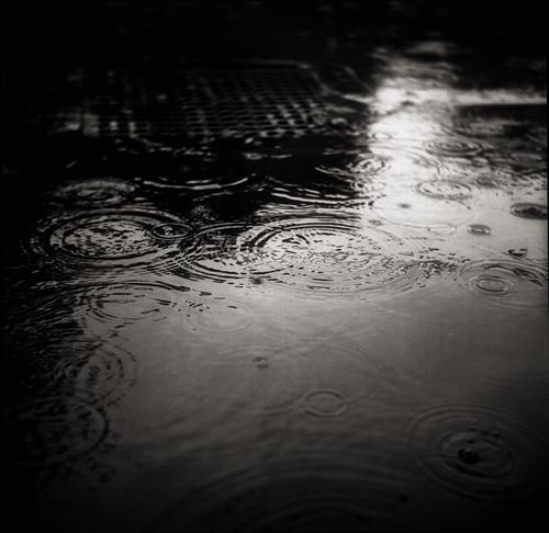 ripplet by TommyOshima