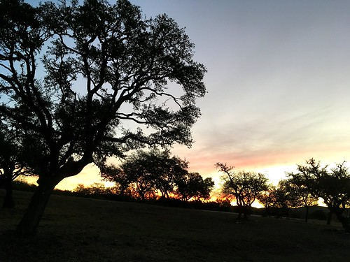 pipecreek texas usa texashillcountry banderacounty latigoranch apple iphonese sunrise trees cloudsstormssunsetssunrises