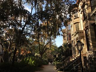 Savannah Neighborhood