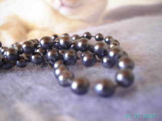 necklace of pearls and cat | by LittleEye
