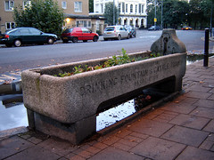 Cattle trough, South Hackney | by Fin Fahey