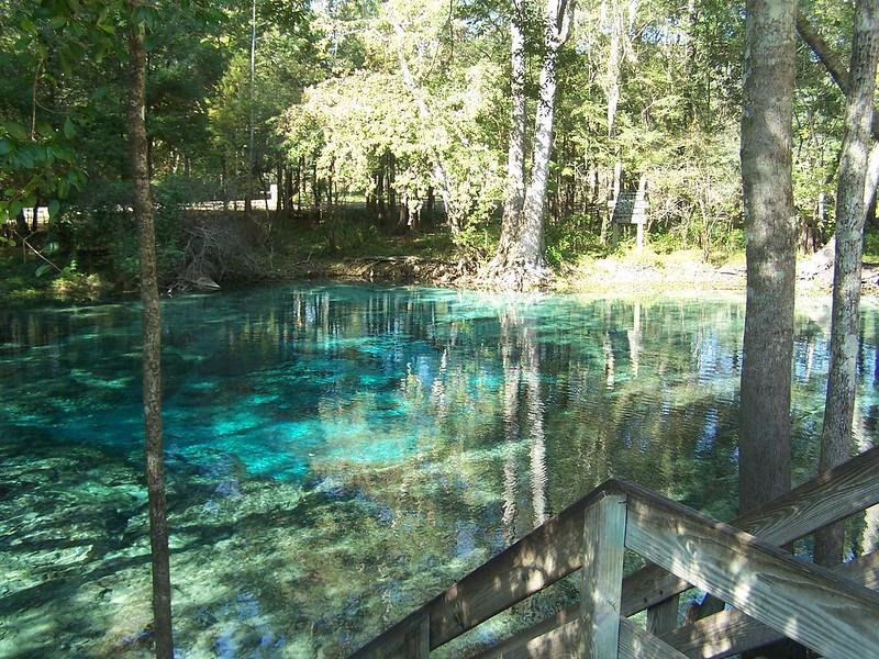 Ginnie Spring (Gilchrist County, FL)