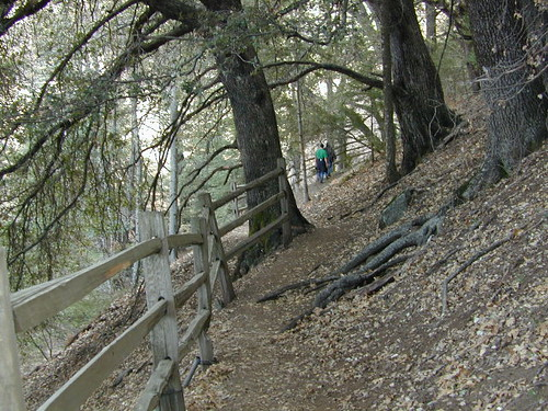 Palomar Hikers