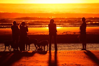 Women and their Dogs at Sunset | by Ricardo Carreon