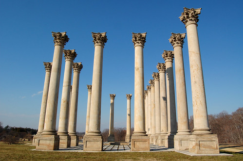 Old Capitol Columns at the National Arboretum | by ctankcycles