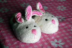 04/09/08 slippers | by angelle321