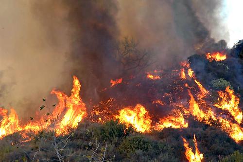 FHR_Fire(125) | by Miro-Foto