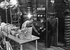 Frankenstein (1931)   by twm1340