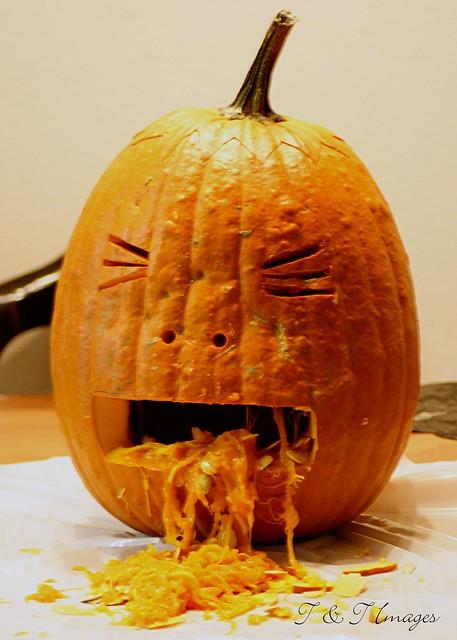 Pumpkin throwing up