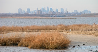 Jamaica Bay Skyline | by j_bary