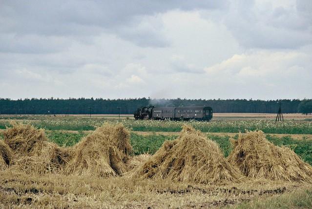 Een PKP Ty2 in het wijdse landschap bij Wolsztyn