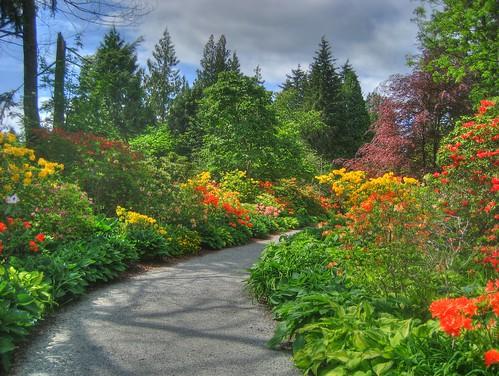 Stanley Park Garden of Eden | by keepitsurreal