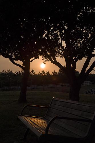 sunrise sigma foveon sd15