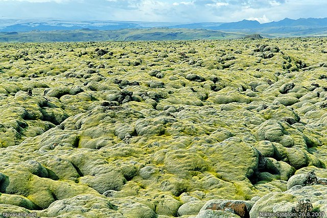 Iceland Eldhraun