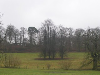 Copse Woldingham to Oxted (short)