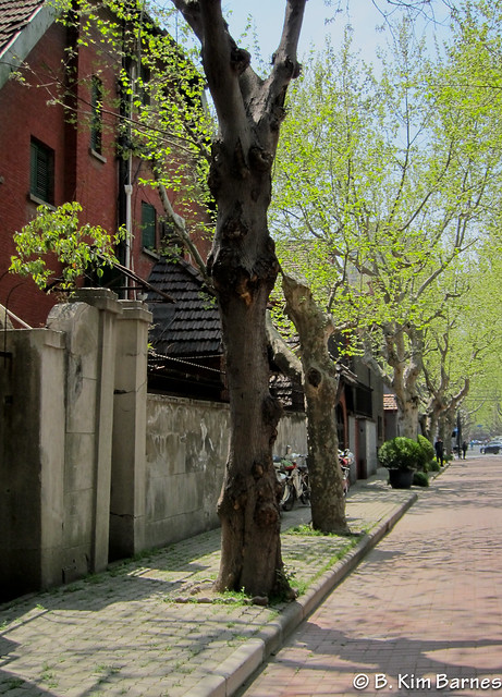 A street in the French Concession