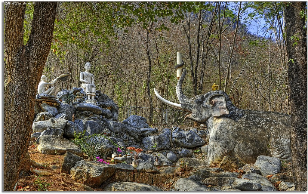 Buddha And The Mad Elephant Nalagiri In The