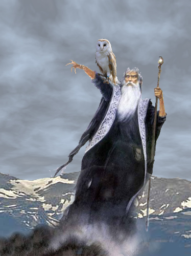 Wizard and owl | by allspice1