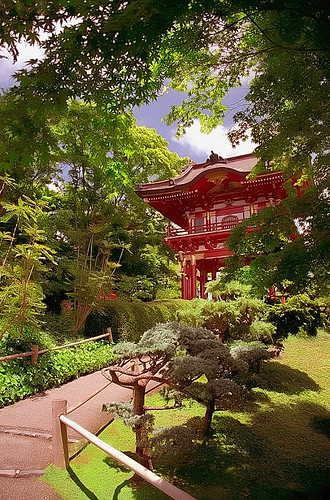 "San Francisco - Golden Gate Park ""Japanese Tea Garden - Road to the Temple"" 
