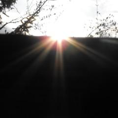 Sun rays | by Last Hero