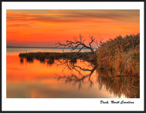 sunset red sea tree beach grass duck northcarolina frame obx holidaysvacanzeurlaub