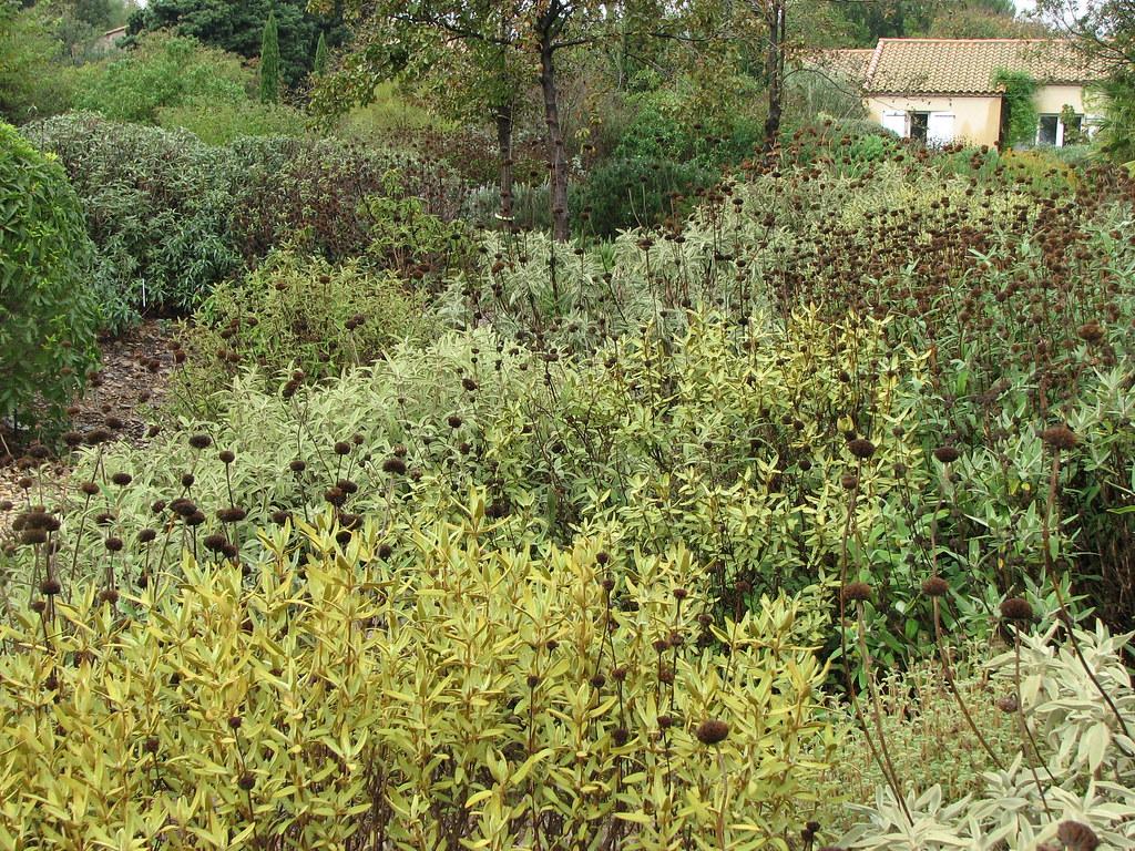 The Trial Garden At Pepiniere Filippi Www Jardin Sec Com Flickr