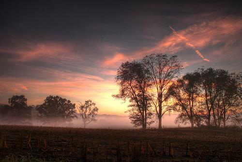 trees sunset mist sunrise landscape hdr thechallengefactory adamschiavone