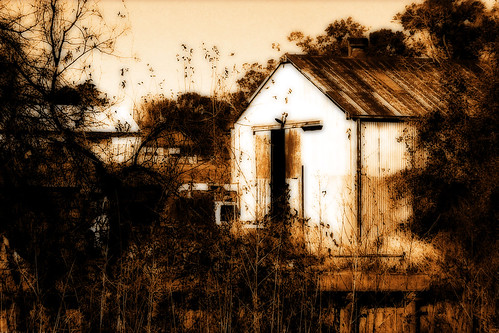 old trees urban building abandoned sepia photoshop louisiana lafayette rusty 2008 orton corrugatedmetal 3721 anawesomeshot