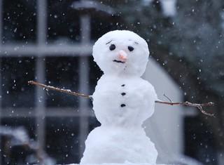 Snowman Neighbor | by MGShelton