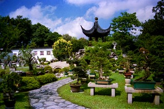 Chinese and Japanese gardens,  Bonsai section, Singapore | by rahuldlucca