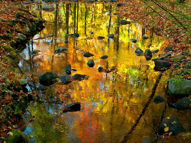 River of Molten Colors